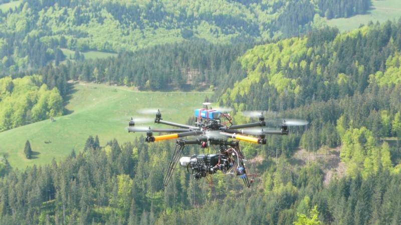 Mission Schwarzwald erfüllt