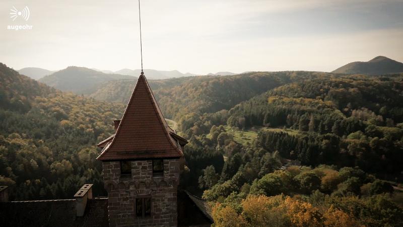 augeohr Pfalz reel online